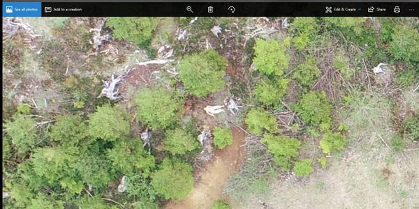 drone forestry search and rescue