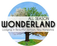 All Season Wonderland
