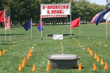 Out Door Teambuilding, Lanes, Flags, Finish Line Sign, Tug-of-war Rope, and Staff