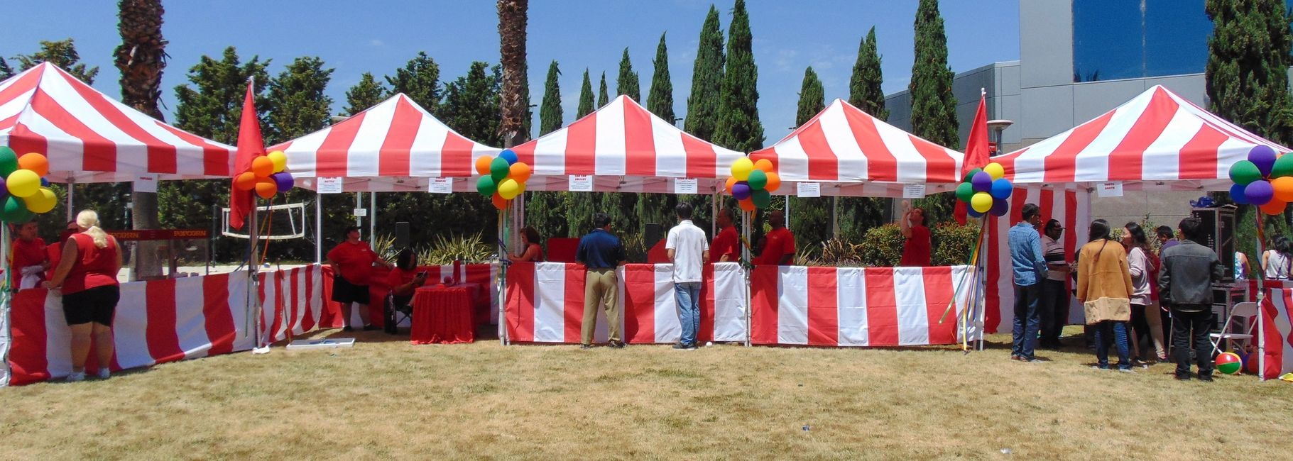 Picnic entertainment, picnic games, games for picnics, corporate picnic games, company picnic games