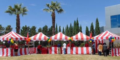 picnic planners for corporate events, picnic planning, planning a picnic, bay area picnic planners