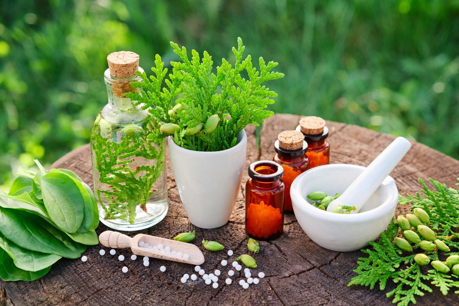 Homeopath natural medicine