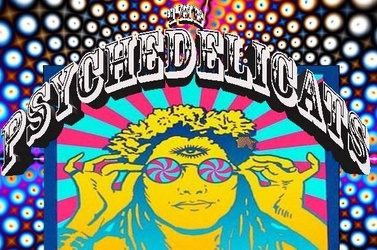 The Psychedelicats  - 60s psych rock tribute/ 60s party band