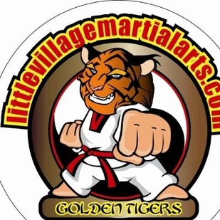 Little Village Martial Arts