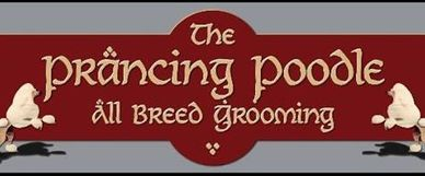 Prancing Poodle, Dog Grooming, Orangevale business