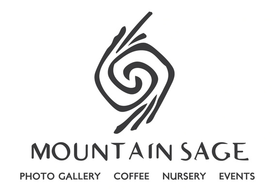 Mountain Sage Nursery