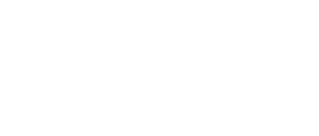 Tennessee Music Awards ™
