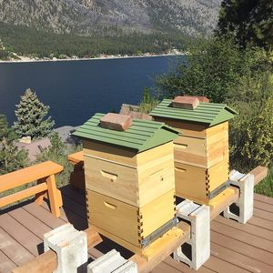 """Adam"" and ""Eve"" hives - Flow® Hives along Lake Chelan, Washington"