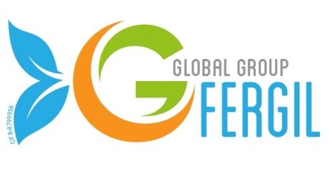GLOBAL GROUP FERGIL S.L
