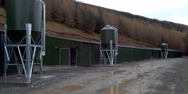 Large Agricultural and farm buildings designed and erected throughout the country