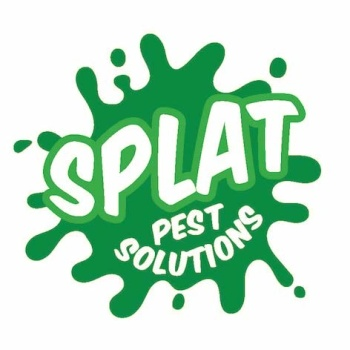 Splat Pest Solutions