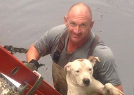 Officer Randy Lopez saves dog in water while a manatee stands watch.