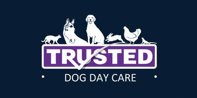 "<img src=""Dog day care png"" alt=""Dog Sitter near me, doggy day care  near me, caring for dogs "">"