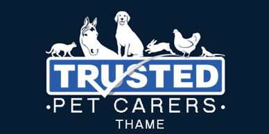 Pet Sitter jobs Thame, Dog Boarding, Pet Sitting, caring for pets