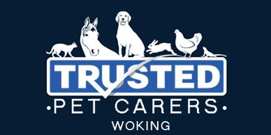 Pet Sitter jobs Woking, Dog Boarding, Pet Sitting, caring for pets