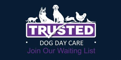 Trusted Pet Carers dog day care