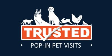 "<img src=""pet sitter png"" alt=""Dog Sitter near me, doggy day care  near me, cat sitter "">"