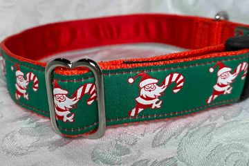 Red anta on Candy Cane on Green Collar