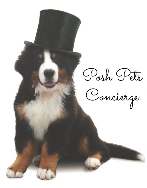 Posh Pets Concierge
