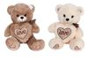 TK033281 - Bear with Love