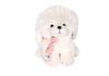 TK033292 - Puppy with long hair