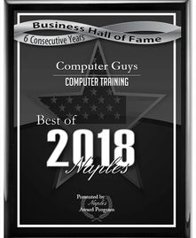 Computer Guys of Naples award for training and service