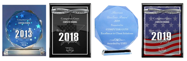 Computer Guys of Naples awards for computer repair help