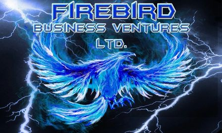 Firebird Business Ventures Ltd. - Business Accelerator - Business Incubator - Saskatoon  Sask Canada