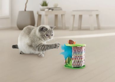 Awesome Toys that interact with our pets.