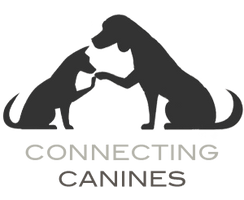 Connecting Canines