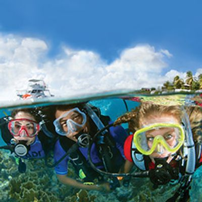 Crystal Blue Diving is Giving Back on On-line Classes, Matching PADI's discount on Open Water Diver