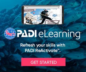Scuba Classes Near me PADI Reactivate Class, Crystal Blue Diving, Lake In The Hills, IL 224-333-0800
