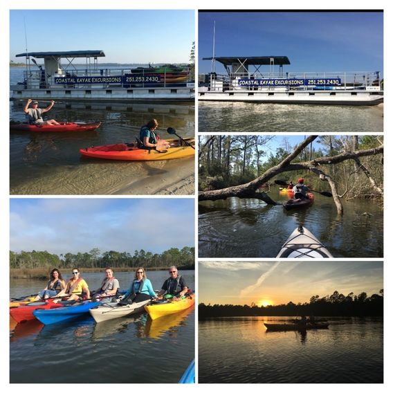 kayaking, eco tours, rentals, dolphin tours, Orange Beach, Gulf Shores, Perdido Key