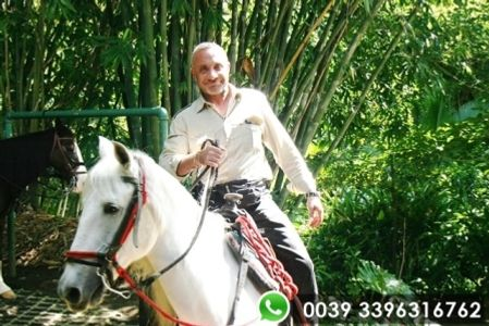 Tour-a-cavallo-Costa-Rica
