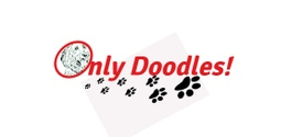 Only Doodles!