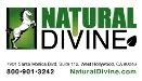 NATURAL DIVINE - NATURAL CONFIDENCE STORE