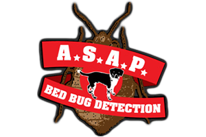 ASAP Bed Bug Detection