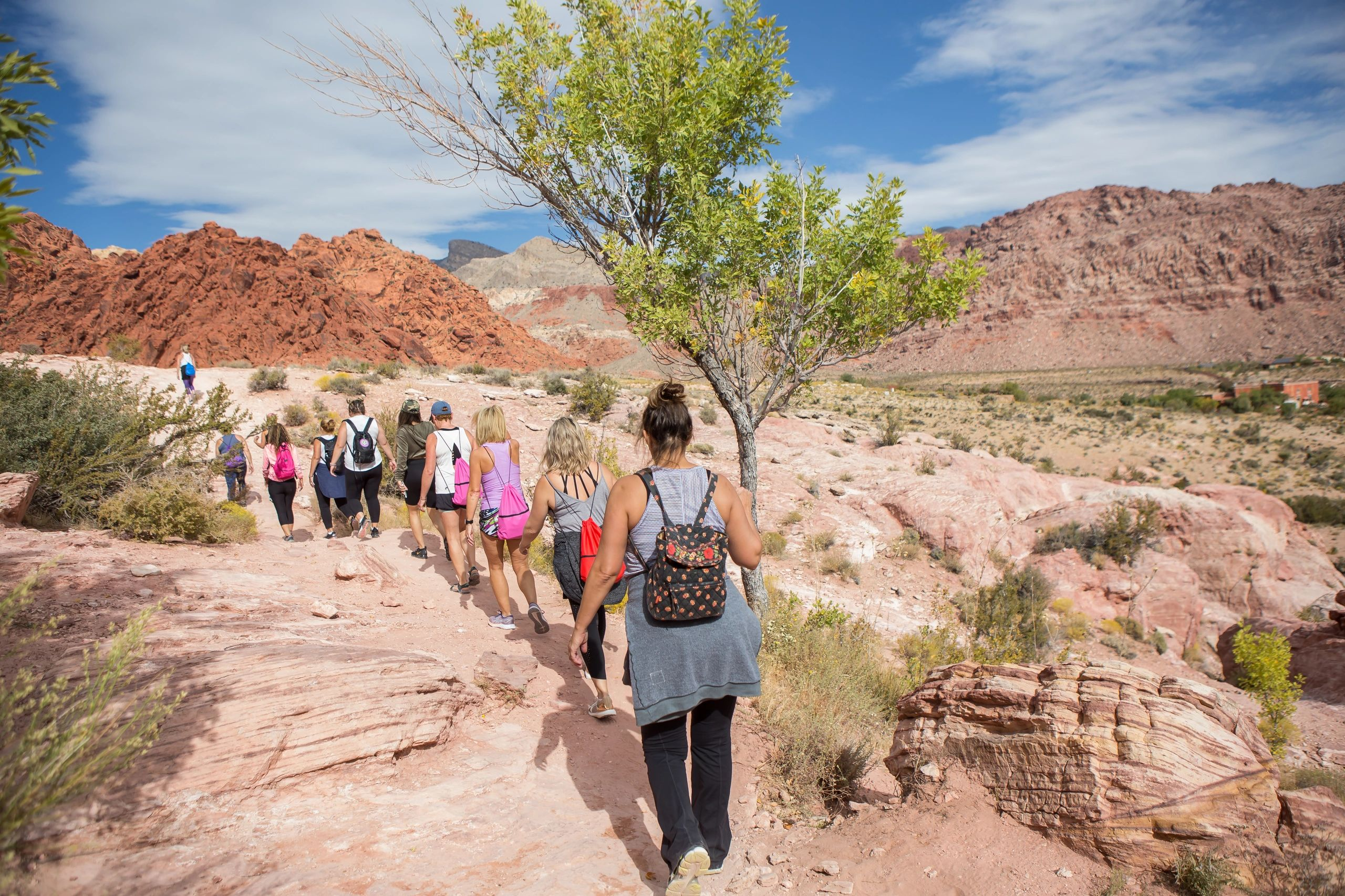 Red Rock Canyon Guided Hiking