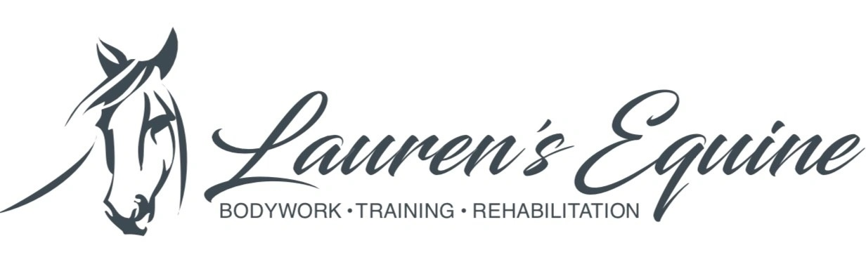 Lauren's Equine                BODYWORK  TRAINING  REHAB