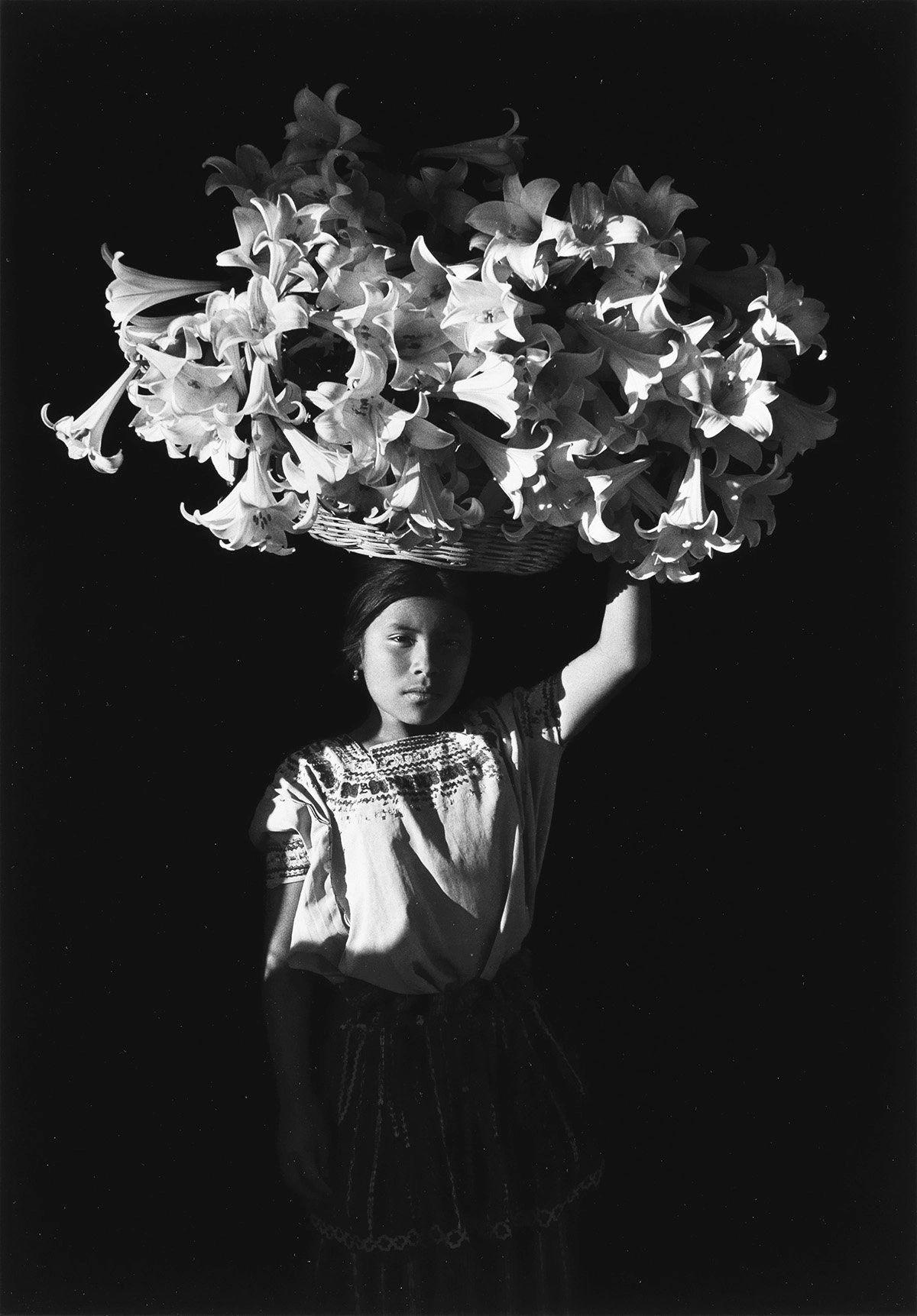 """Basket of Light ..."" by Flor Garduño"