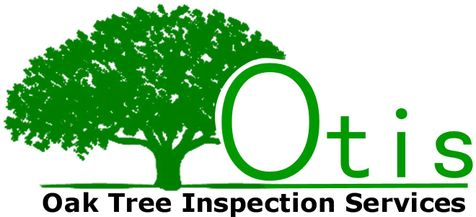 Oak Tree Inspection Services