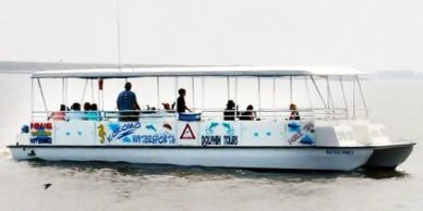 Paradise Dolphin Cruises in Manteo on Roanoke Island in the Outer Banks