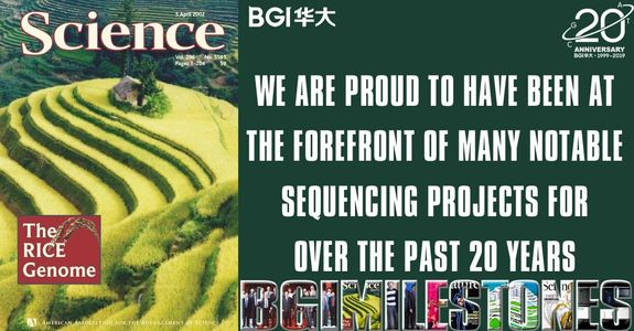 BGI, completion of the first draft of the rice genome