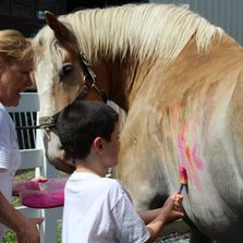 Child painting horse, speech language pathology in motion, equine assisted therapy