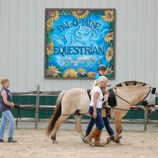 hippotherapy, therapeutic horseback riding, equestrian therapy, horse therapy, long island