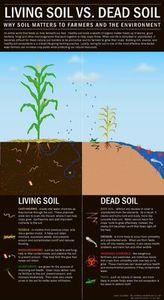 Why soil matters to Farmers and the Environment.  Living soil vs. Dead Soil