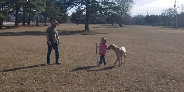 large breed dogs and kids, children training dogs, obedience