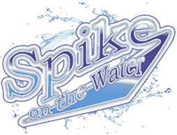 Logo for Spike on the Water  Boat Detailing Company
