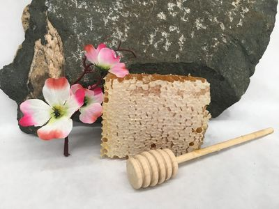 Raw honey comb from Stephen's Orchard & Apiary.