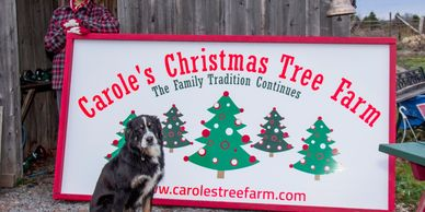 A woman and a Bernese dog posing next to the signboard